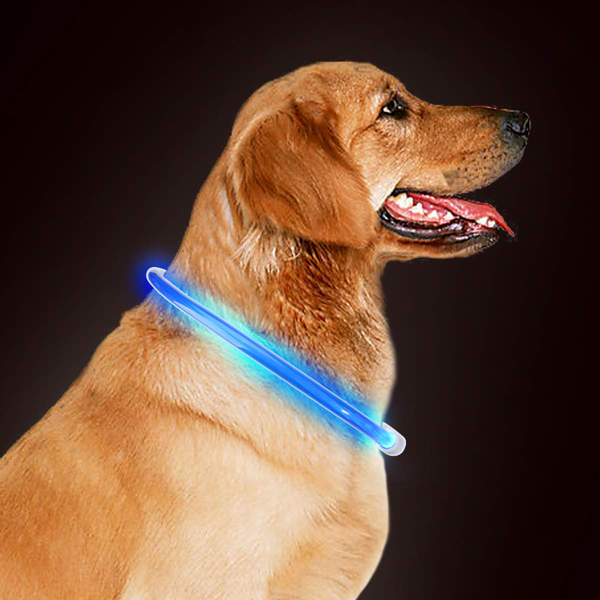 takyu LED Dog Collar, High Visibility Flashing LED Dog Safety Collar Rechargeable Adjustable Size Fit for All Dog, Cat and Pets