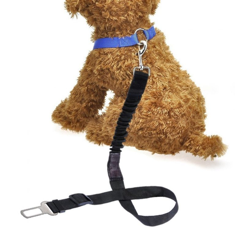 Dog Safety Seat Belt