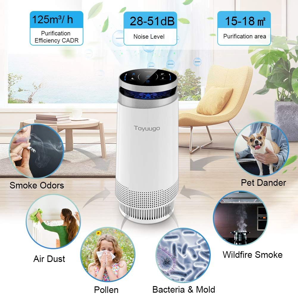 toyuugo Air Purifier, True HEPA Air Cleaner
