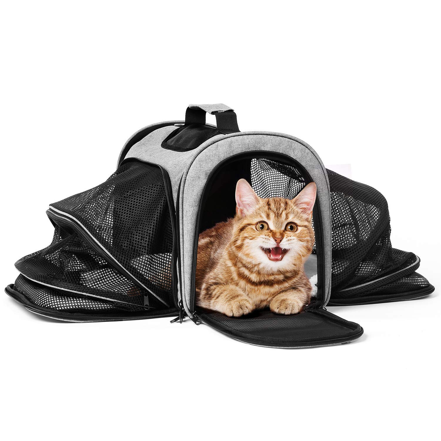 Katze-Tatze Pet Carrier, Portable Dog Carrier Cat Carrier Bag
