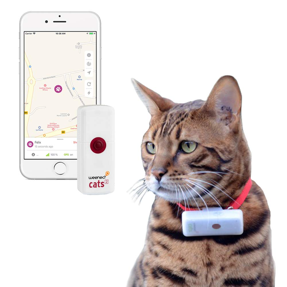 Weenect Cats 2 – GPS Tracker for Pet Cat