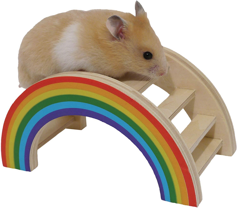 Rosewood Boredom Breaker Small Animal Activity Toy Rainbow Play Bridg