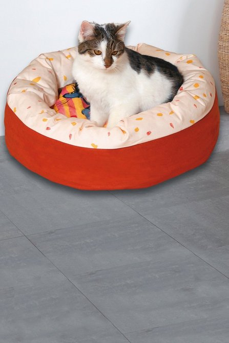 73% off Printed Cat Bed on Studio