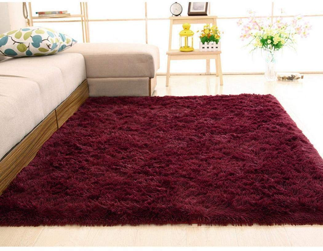80% off Modern Area Rugs Soft Shaggy Carpet,80 x 160cm